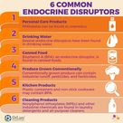 Endocrine Disruptors: The Hidden Poisons In Your Everyday Environment