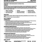 How To Make A Resume 101 Examples Included How To Make Resume Job Resume Format Resume Format