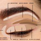 Where to Apply Eyeshadow + Eye Makeup Diagram  2020