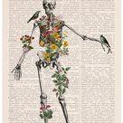 Wall decor Human Skeleton full of nature,  Anatomy art, Wall art, Wall decor, Poster art, Skeleton wall art,  art SKA142PA3