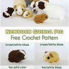 Neugeborenes Meerschweinchen kostenlose Muster  #amigurumi #crochet #knitting #amigurumipatterns #crochetafghanpatterns #babycrochetpatterns #crochetafghan #yarn #crochetscarf #crochetblanket