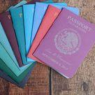 Ziel Hochzeitseinladungen Custom Passport lädt | Etsy