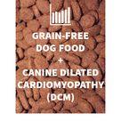 Grain Free Dog Food + Canine Dilated Cardiomyopathy DCM