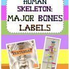 Major Bones Labels