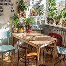 10 Houseplant Lovers to Follow on Instagram - Gardenista