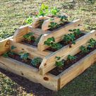 Strawberry Pyramid Planter Plans DIY garden