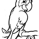 Printable jungle bird parrot coloring pages - Free Kids Coloring Pages Printable