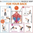 Back Workout To Build A Broader, Stronger Back