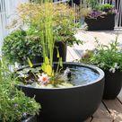 Ein Miniteich auf dem Balkon | Gartenteich Ratgeber