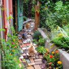 Chicken Garden