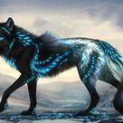 Canis Lumen   Custom design by KhaliaArt on DeviantArt