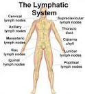 This Lymphatic Cleanse Will Detox Your Whole Body