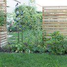 Meine Garten Bepflanzung | Villa Josefina