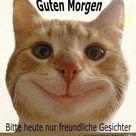 EBENBLATT: Katzen