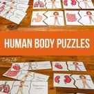 Human Body Puzzles
