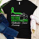 Gallbladder Cancer Awareness Shirt / Tank Top / Hoodie, Gallbladder Cancer Fighter Tshirt, Family Su