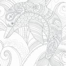 DOLPHIN - CC1117 By COLORING