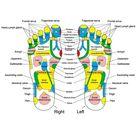 New Foot Massager Cushion Massage Mat Improve Blood Circulation Relieve Ache Pain Acupoint Stimulation Eliminate Muscle Fatigue