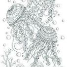 Adult Colouring    Jellyfish