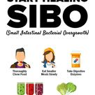 How Do You Know You Have SIBO And What Is Your #1 Healing Food?