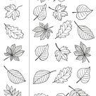 coloriages-automne