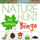 Nature Hunt Bingo