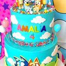 Bluey Birthday Cake. Bluey kids Birthday Cake decorated with fondant, nerds rope and sprinkles!