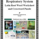 Respiratory System Latin Root Word Worksheet and Crossword Puzzle Set