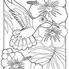 Humming Bird Worksheet: Printable Coloring Page for Kids
