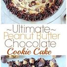 Ultimate Peanut Butter Chocolate Chip Cookie Cake - Baker by Nature