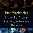 Pine Needle Tea- Benefits, How To Make, & Possible Dangers