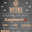 Weekly Pregnancy