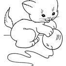 Ausmalbild Katzenbaby spielt mit Ball zum Ausdrucken