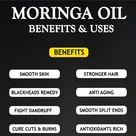 MORINGA OIL - BENEFITS AND USES - The Little Shine