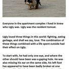 Cute Stories