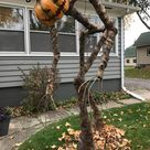 45 Creative Halloween Decorations That Are So Good, There's Almost No Competition