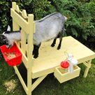 Goat Barn