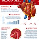 Cardiovascular Organ Health Disease Vertical Info Stock Vector (Royalty Free) 1360069715