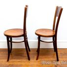 Pair of Antique Mundus Crocodile Bentwood Bistro Chairs, Art Nouveau Thonet Bistro Dining Chair, Crocodile Print Chair, Mundus Thonet Chairs