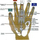 Reflex points, hands, feet and face.
