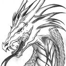 Realistic Dragon Coloring Pages | K5 Worksheets