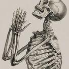 William Cheselden, Osteographia The Anatomy of Bones, London, 1733 Praying Skeleton Art Print by enshape