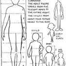 Drawing the Human Body & People in its Correct Ratios and Proportions of body parts in relation to eachother