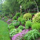 Steep Backyard