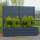 Pflanzkasten Holz Lang L mit Sichtschutz