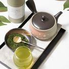 Tokoname Yaki - Kyusu - 9 fl Oz (270cc) Teapot for Fukamushi tea