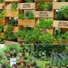 Große Ernte auf kleinem Raum - Inspirierende Ideen für vertikale Gärten