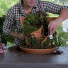 How to Make an Adorable Broken Pot Fairy Garden in 4 Easy Steps