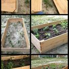 How to Build a $15 Raised Garden Bed
