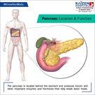 Pancreas Disease – Best Gastroenterology Hospital in India